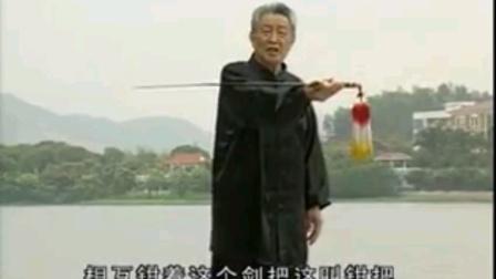 54式杨式太极剑分解教学视频上(宋玉鹏老师主讲)