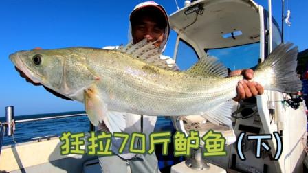 岛民阿杰玩海钓 花80块买了2斤活虾海钓,狂拉70斤鲈鱼卖3000块,这买卖太划算