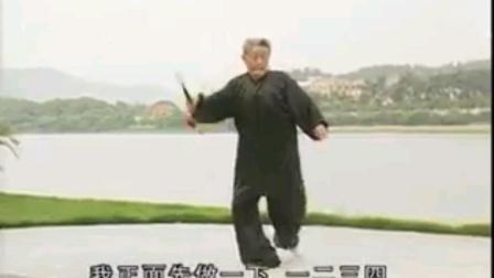 54式杨式太极剑分解教学视频下(宋玉鹏老师主讲)