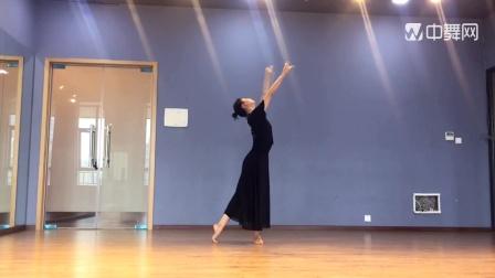 成人古典舞思慕正面视频分解完整版,原创候木懿,阜阳艺路舞蹈学校提供,仅供内部学员使用