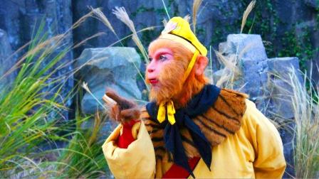 孙悟空的72变千变万化,为何他从不变猫?与一位皇帝有关!