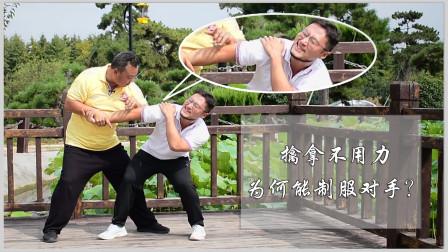 防身擒拿系列:为何不用力就能制服对手?庞恒国讲太极拳梢节原理
