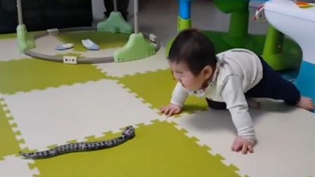 这种玩具太过逼真,当它朝宝宝袭来时,宝宝心里防线彻底被摧毁了