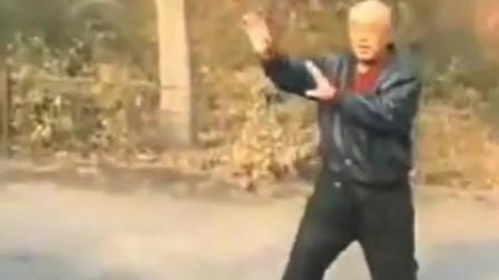 赵福江前辈现场演练传统武术大成拳和八极拳!