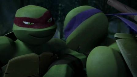 《忍者神龟》看看这小四只乌龟,也太可爱了
