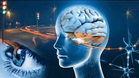 脑类知 - 眼睛和大脑你更相信谁.mov