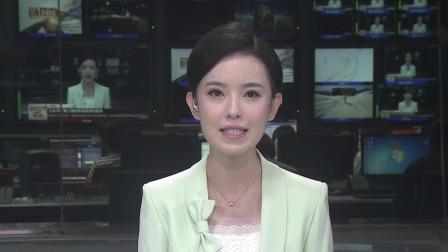 """第一时间 辽宁卫视 2020 招生部门公众号遭抢注""""山寨号""""以假乱真"""
