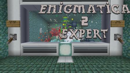 我的世界:羊驼跟我上天入地  我的世界Enigmatica2探险P21【某咪sa】
