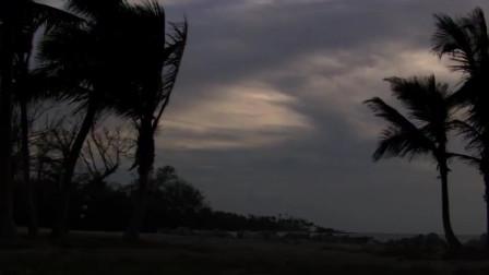 迈阿密风云:老大的女人竟要跟小伙走,只因为这件事