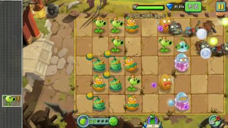 植物大战僵尸小喵解说384:七零八落的战斗布局丝毫不影响最后的胜利