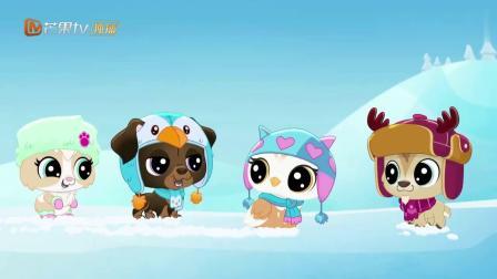 至Q宠物屋:滚雪球太好玩了,胆小的昆西非常喜欢!