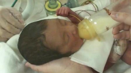 新生儿第一次喝奶,慢慢试探后大口大口吸食,喝奶的样子太可爱了