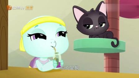 至Q宠物屋:乌龟贝芙要参加狗狗举办的柔道大赛,小玉劝她不要去  !