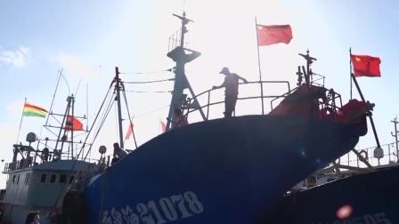 浙江新闻联播 2020 受近期台风影响海鲜价格上涨 9月中旬后可望回落