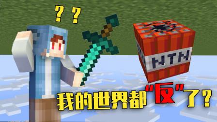 我的世界:如果MC变成相反世界!剑只能反着拿,TNT变成NTN?