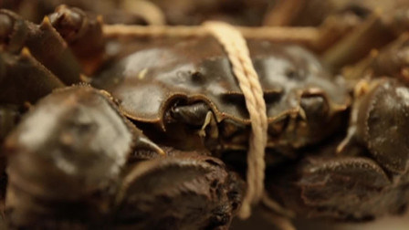 舌尖上的中国:太湖清蒸河蟹,食蟹而不失原味,那肯定是清蒸才最地道