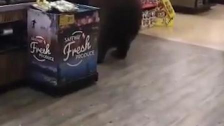 大摇大摆!美国一野熊闯进超市,在货架旁选好东西从容叼走
