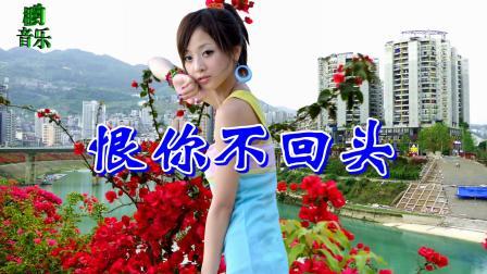 韩宝仪一首《恨你不回头》经典情歌,声声入耳,好听极了!听了一遍又一遍!