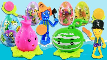 植物大战僵尸神奇变蛋玩具蛋 火龙果与西瓜投手VS光头强僵尸 鳕鱼乐园