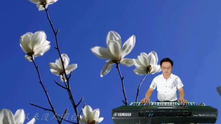 《一起走过的日子》DJ版电子琴音乐