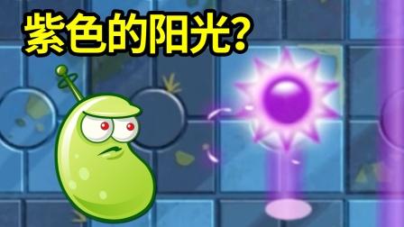 植物大战僵尸2国际版:紫色的阳光你见过吗?