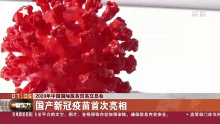 视频 2020年中国国际服务贸易交易会: 国产新冠疫苗首次亮相