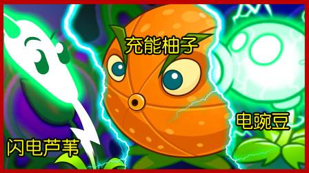 植物大战僵尸 闪电芦苇vs充能柚子vs电豌豆,谁的电力最强?
