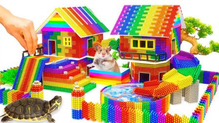 用磁力球为小仓鼠和海龟建造可爱的小别墅,它们会喜欢吗?