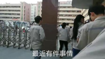 深圳:深圳工厂,美女很多,打工仔进厂却没找到女朋友!到底为什么?