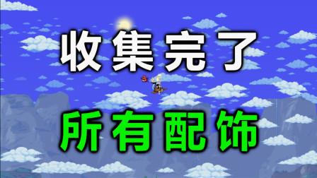 【Terraria1.4】【大师】配饰全收集!【60】