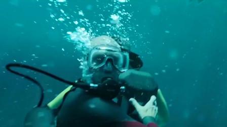影视:远古巨型鲨鱼复活,猎人类!