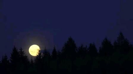 沈尤格创编柔力球《眺月欢歌》