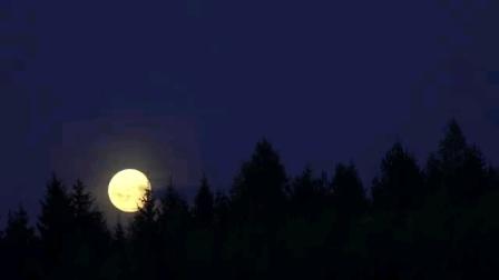 沈尤格(简化版)柔力球《眺月欢歌》背面