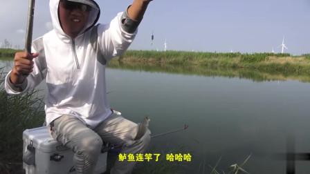 农村小伙淡水河旁野钓,用花甲肉作饵,这鱼获还是第一次见,外观真不赖