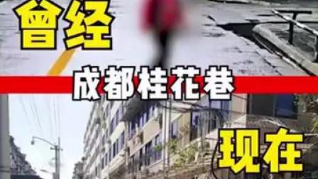 成都桂花巷桂花树被砍结果公布:罚款超50万
