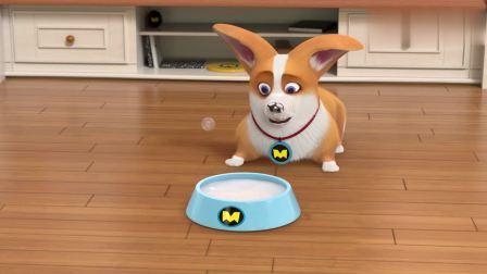 宠物店的秘密:我只想好好喝个奶,怎么就成了洗面奶?