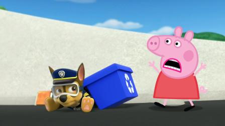 小猪佩奇帮助汪汪队立大功阿奇