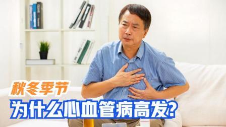 秋冬季节来临,为什么心血管疾病发生率比夏天高?医生给出解释