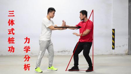 三体式不出功膝盖疼?形意拳桩功的力学分析,告诉你原因