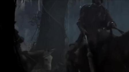 魔侠传之唐吉可德:唐吉可德未完成大侠梦,身无分文闯荡江湖