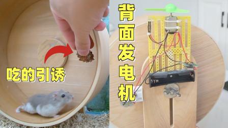 用仓鼠跑轮发电真的可行吗?小仓鼠:做个人吧