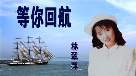 林翠萍-《等你回航》,站这港边,盼你归航,只有海鸥在飞翔!