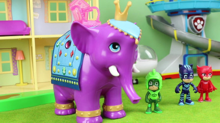 睡衣小英雄认识人类的朋友大象