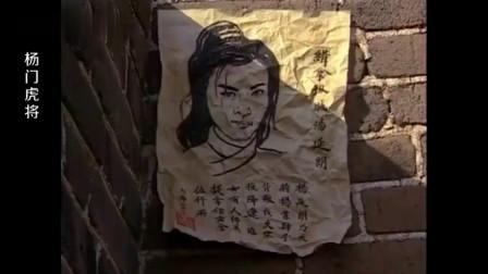 杨门虎将:四郎带兄弟骨灰回长城,不料被老兵当成汉奸一箭射死!