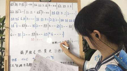 七孔降B调葫芦丝教学视频第十三课《你莫走》