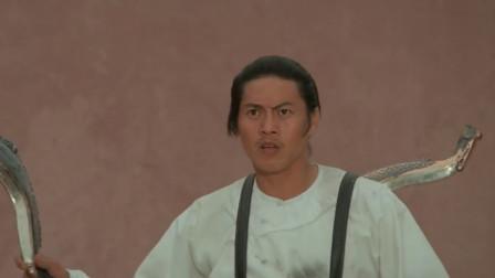 飞龙斩:司马骏被官兵,还遇到师弟来寻仇,他只好使出飞龙斩