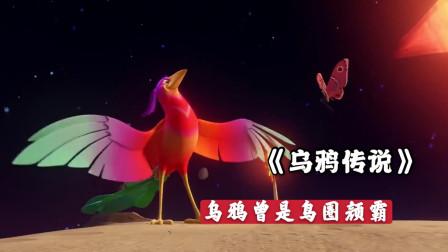 鸟圈颜值扛把子乌鸦,为救地球上的小动物,竟然毁掉了五彩羽毛