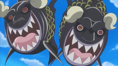 航海王:罗和明哥对决斗鱼来掺和,分分钟碎成数半