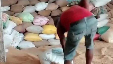印度面粉厂的工人赤脚工作,一地的粮食沾满臭脚味,真是太缺德了!