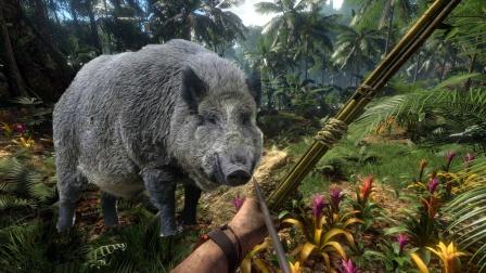 《丛林地狱》捕杀100头野猪体验,看过你就明白了
